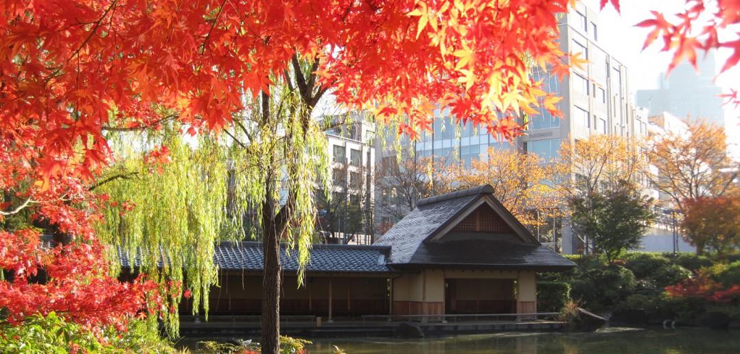 Parc Hinokicho, Tokyo (article par amuzen)