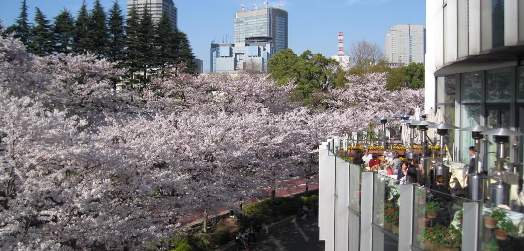 Tokyo Midtown (article par amuzen)