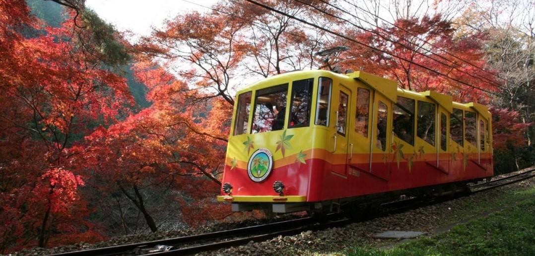 Mont Takao - Le festival des Feuilles d'automnes (article par amuzen)