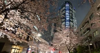 Roppongi Hills SPRING 2016 (article by amuzen) - guide de Tokyo manifestations