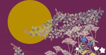 Comtemplation de la lune 2016 - jardin Mukōjima Hyakkaen (article d'amuzen)