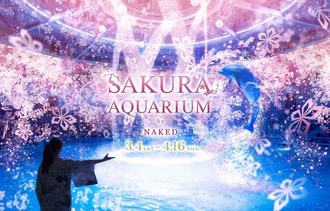 sakura aquarium main