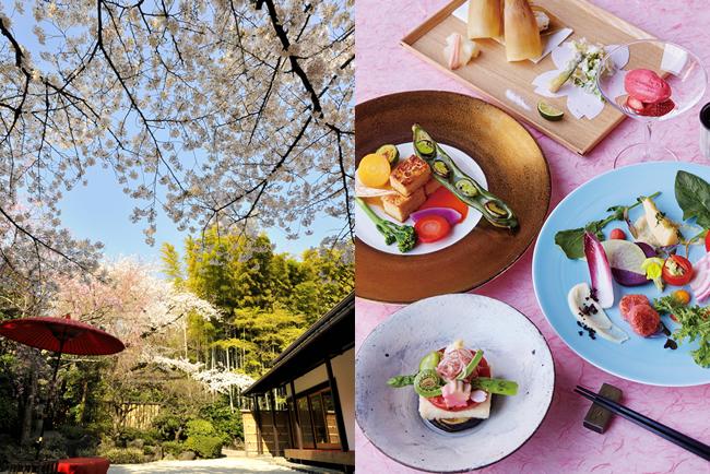Fête du printemps « Iki » 2017 à Happo-en (article d'amuzen)