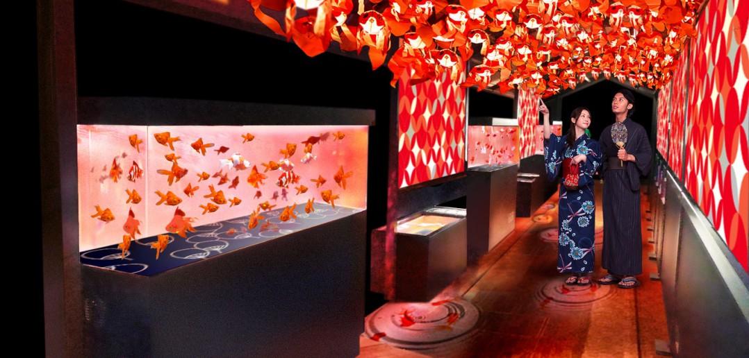 « Tokyo Goldfish Wonderland » au Sumida Aquarium (article d'amuzen)