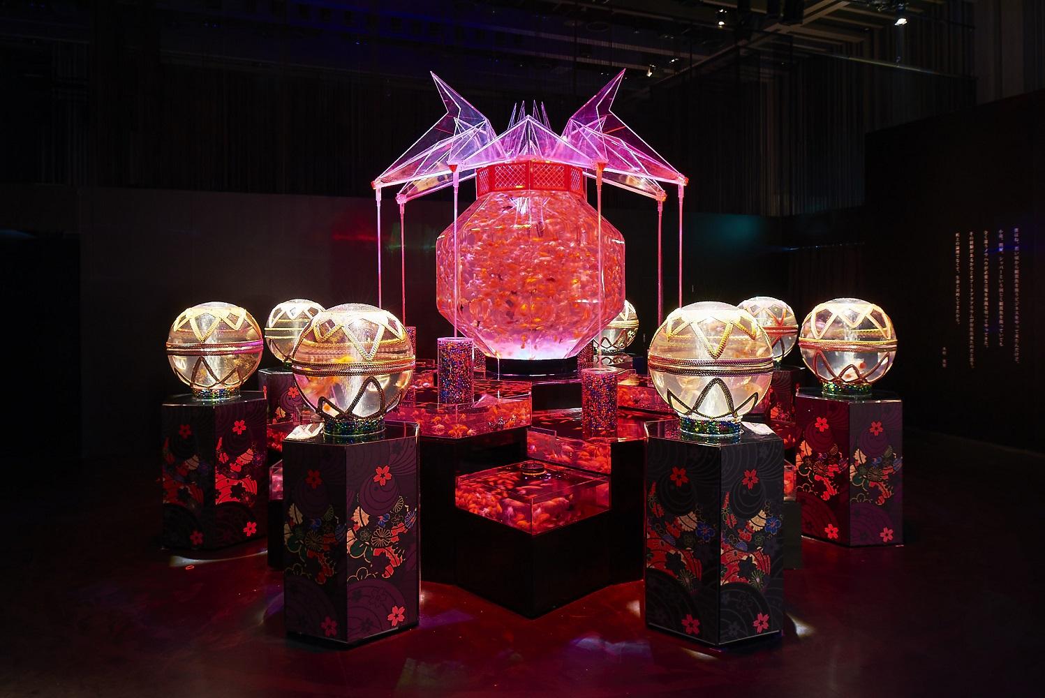 ECO EDO Nihonbashi - Art Aquarium 2017 (article d'amuzen)