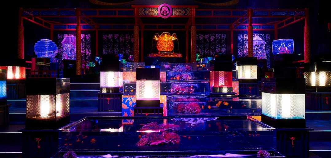 ECO EDO Nihonbashi - Art Aquarium 2017 (article d'amuzen)