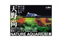 Exposition « Nature Aquarium » de Takashi Amano (article d'amuzen)