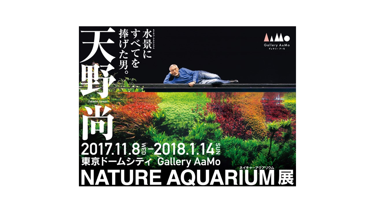gallery-aamo-nature-aquarium-takashi-amano slider