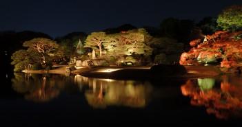 Feuilles d'automne 2019 au Jardin de Rikugi-en