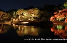 Feuilles d'automne 2017 dans le Jardin de Rikugi-en