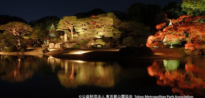 Feuilles d'automne 2017 – le Jardin de Rikugi-en