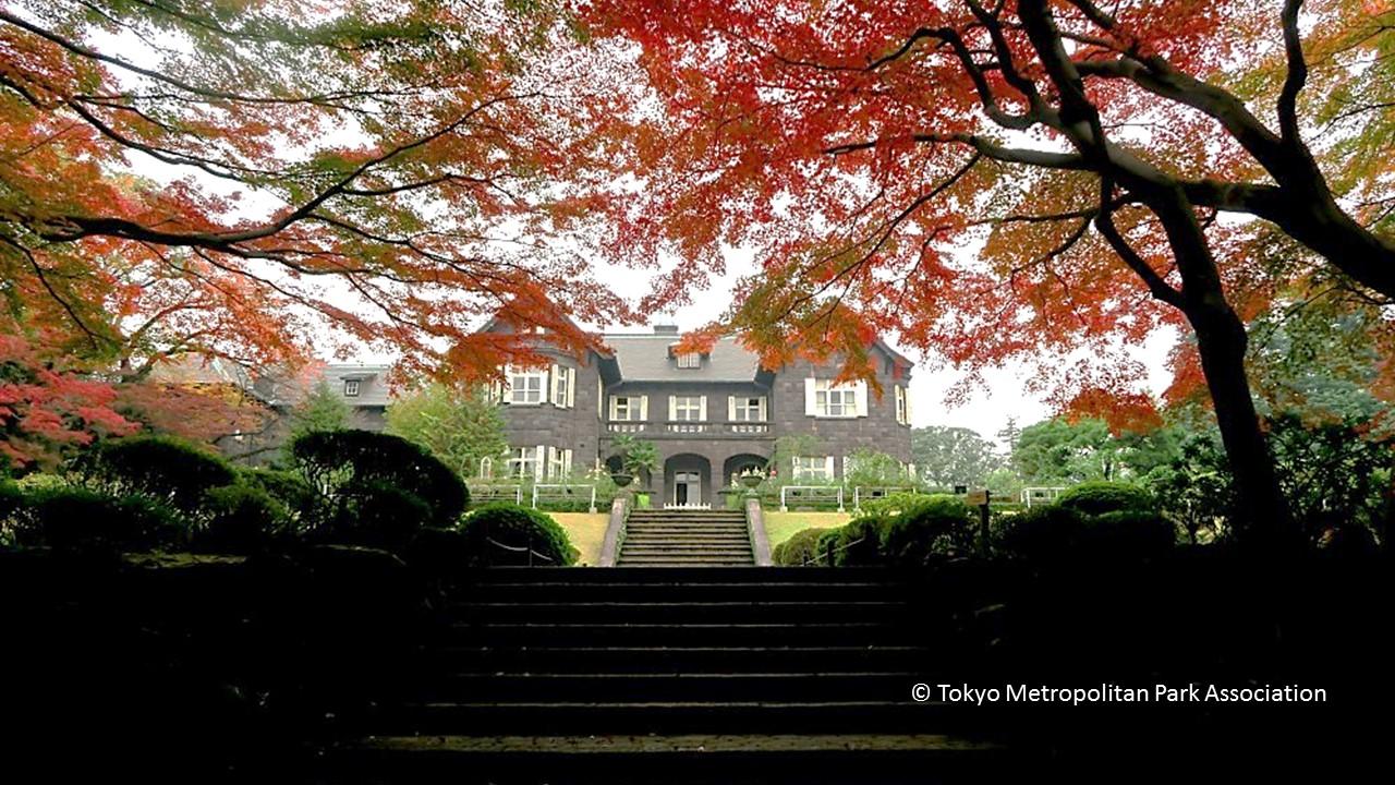 Crédit photo : Tokyo Metropolitan Park Association