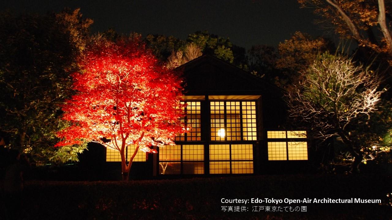 Ouverture nocturne et éclairage des feuilles d'automne au musée Tatemono-en