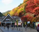 Festival des feuilles d'automne au mont Takao 2019