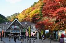 Festival des feuilles d'automne au mont Takao