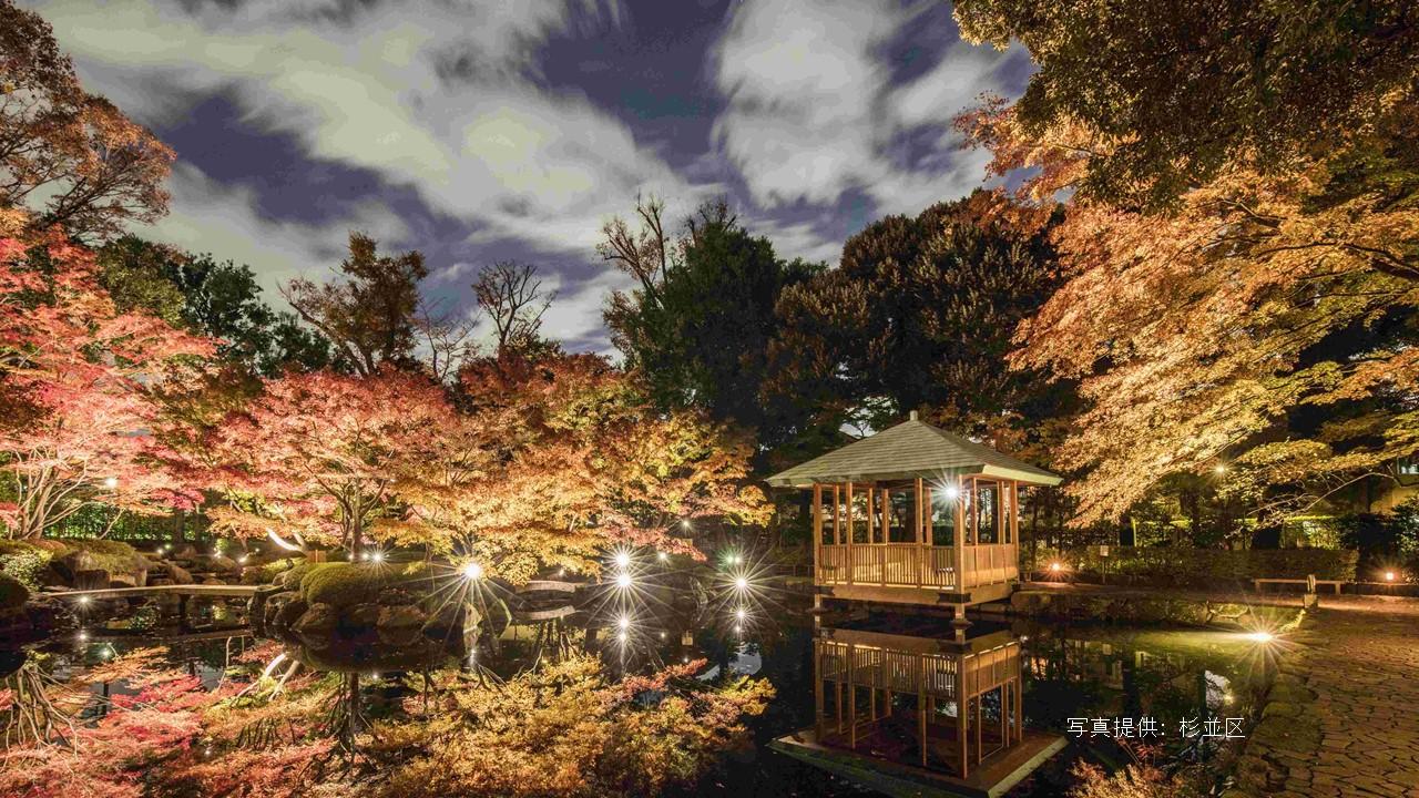 Éclairage des feuilles d'automne au Parc Otaguro