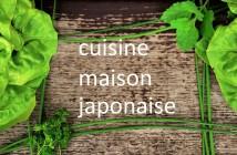 Voyage à distance : cuisine maison japonaise
