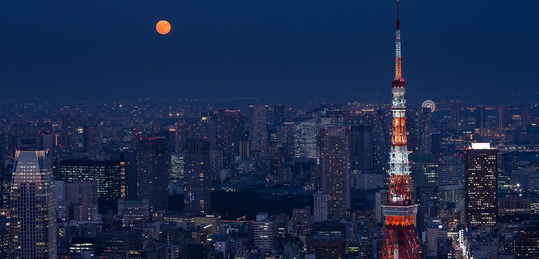 Contemplation de la lune d'automne