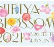 Hibiya Blossom 2021 - Tokyo Midtown Hibiya